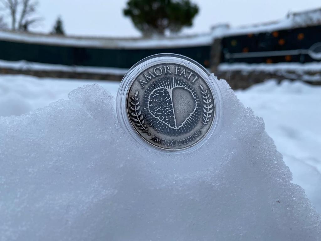 Moneda Amor Fati